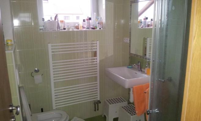 Koupelna PŘED Návštěvou Zelené úklidovky